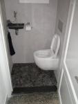 toilet_61.jpg